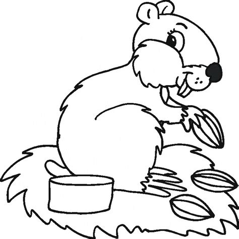 coloring sheets of animals that hibernate hibernating animals coloring pages az coloring pages