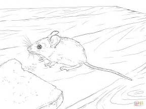 wood mouse coloring page  printable coloring pages