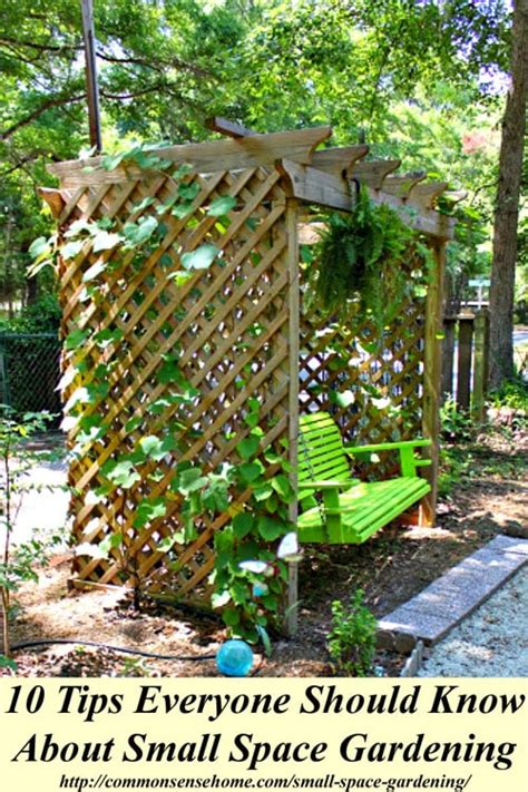 Gardening In Small Spaces Ideas Small Space Gardening 10 Tips Everyone Should