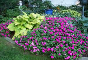 Cheap Garden Plants Great Garden Plants For Your Yard More Beautiful