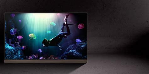 Lg 65 Inch Smart Tv Oled Oled65e7t lg oled
