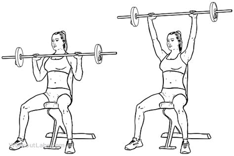 seated barbell press seated barbell press illustrated exercise guide