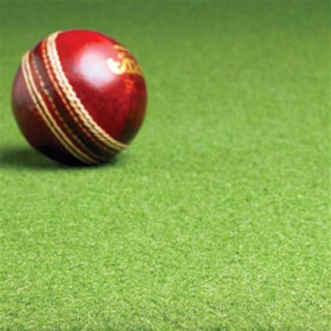 county indoor pvc backed cricket matting non turf