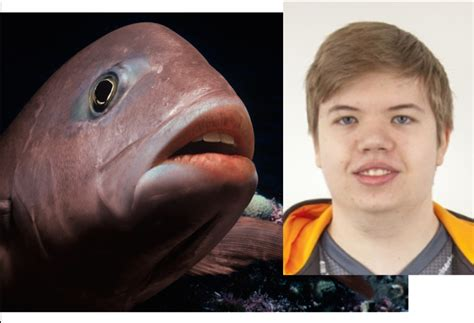 This Fish Looks Like A Jw Looks Like This Fish Globaloffensive
