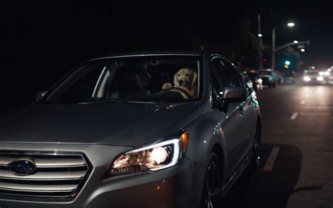 subaru commercial dogs subaru tested subaru commercial puppy extended