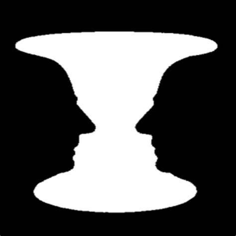 The Rubin Vase by The Use And Misuse Of Your Unconscious Psychological