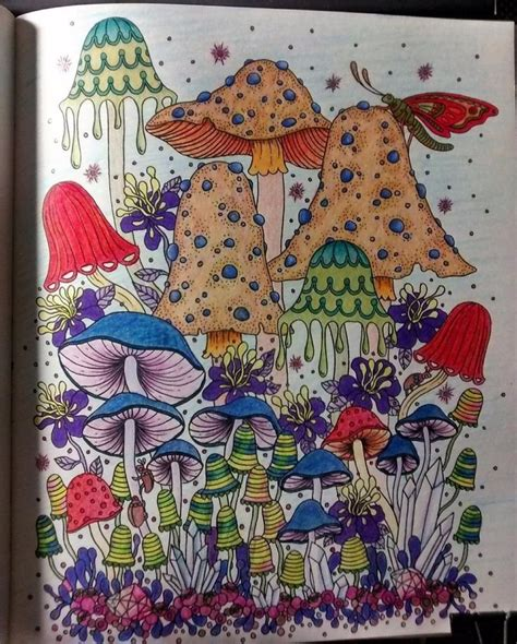 secret garden coloring book hardcover 97 enchanted forest coloring book hardcover myth