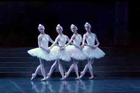 dance of the swans dance of the little swans