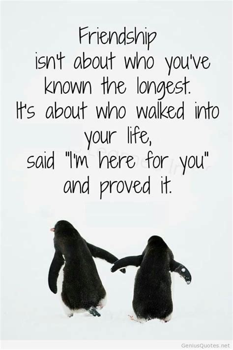 new friendship quotes new friendship quote