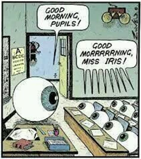 Eye Doctor Meme - 993 best images about eye humor on pinterest cartoon
