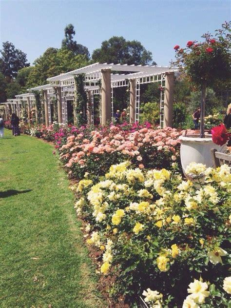 San Marino Botanical Garden Huntington Library Collections Botanical Gardens San Marino Ca United States