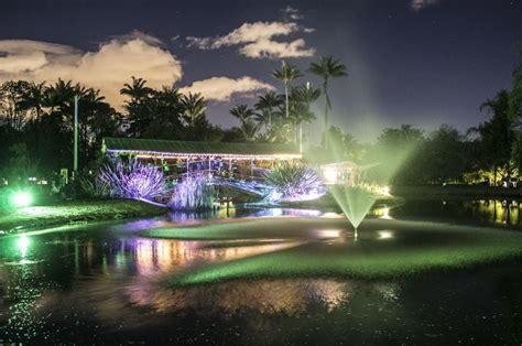 imagenes de jardines nocturnos gratis jard 237 n bot 225 nico nocturno en bogot 225 pulzo com