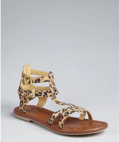 leopard gladiator sandals matt bernson leopard print suede gladiator sandals