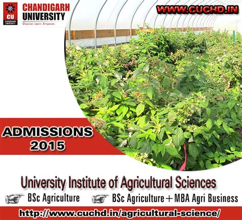 Agri Mba by Career Opportunity In Agri Business Chandigarh