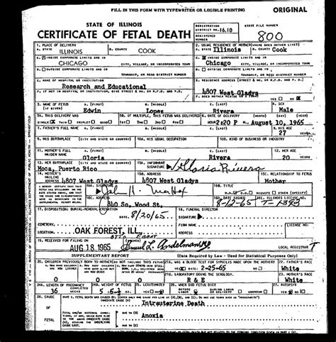 Cook Resume Sample Pdf by Fetal Death Certificate Laveyla Com
