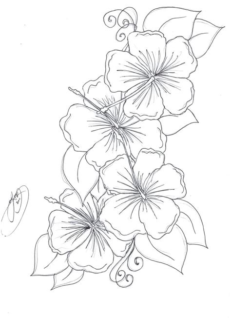 coloring pages of real flowers coloring pages of hibiscus flowers miss adewa fac940473424