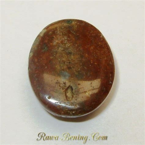 Jasper Coklat Oranye 18 04 Carat batu akik jasper pancawarna oval cabochon 18 04 carat