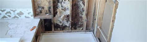 mold in bedroom closet black mold in bedroom closet psoriasisguru com