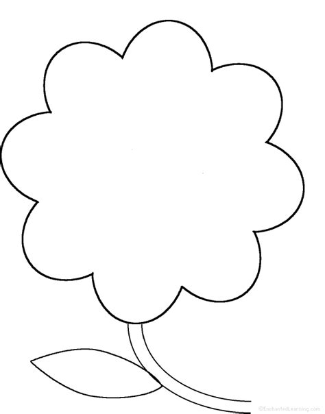 flower template pdf perimeter poem namo flower template