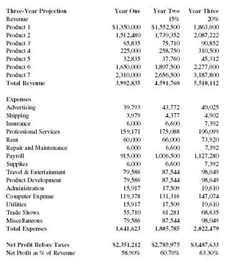 professional executive summary example internet software company business plan executive
