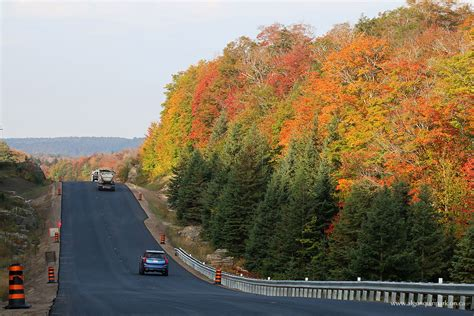 fall colour report algonquin provincial park the