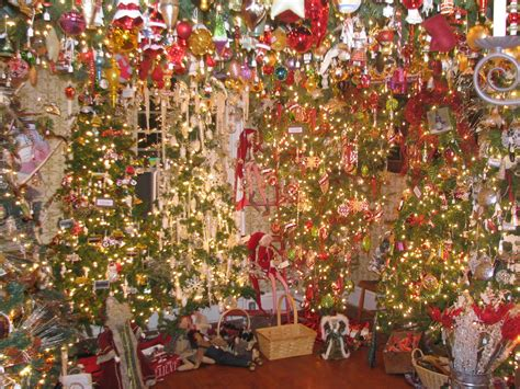 christmas tree store collections
