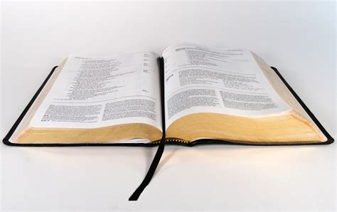 blank open bible clipart best