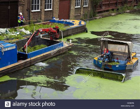 little boat with scooper for cleaning the green algae from - Boat Cleaner For Algae