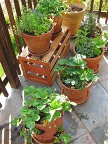 indoor container garden 3 ways how to start indoor vegetable garden for beginners