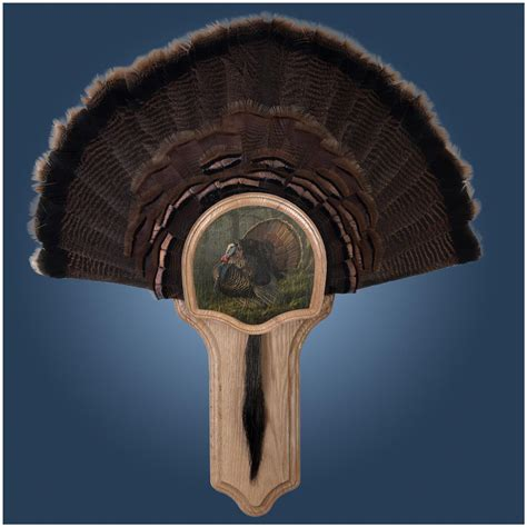 turkey fan mount kit walnut hollow quot king of quot deluxe turkey fan mount