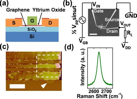 gate graphene transistor a high performance top gate graphene field effect transistor based frequency doubler pdf