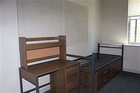 san jose state rooms photo gallery housing services san jose