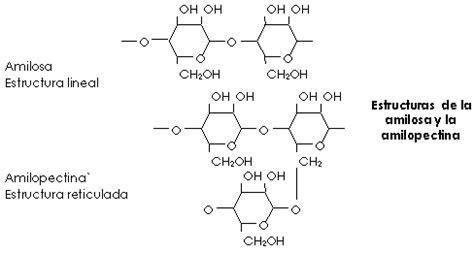 cadenas montañosas mas largas biolog 237 a 2 186 bach gl 250 cidos