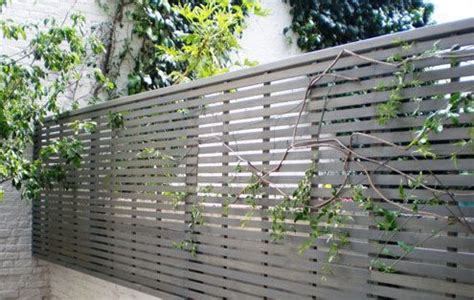 Modern Garden Trellis 1000 Images About Fence Desing On Fence Gate