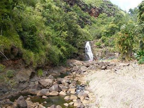 Waimea Arboretum And Botanical Garden By Valley Road Picture Of Waimea Arboretum And Botanical Garden Oahu Tripadvisor