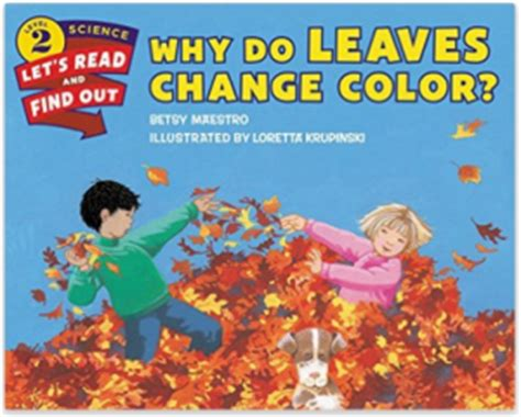 why do leaves change color what we put in our leaves science basket plus a