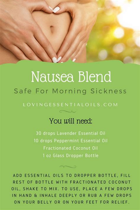 safe to 30 essential puree recipes for everyday books best 25 essential oils for nausea ideas on
