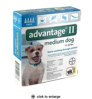 advantage for dogs 11 20 lbs advantage ii flea for medium dogs 11 20 lbs 4pk