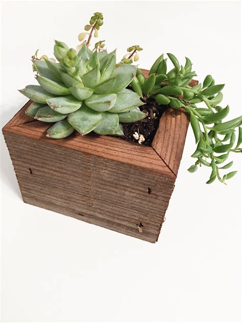 succulent planter box reclaimed wood succulent planter box