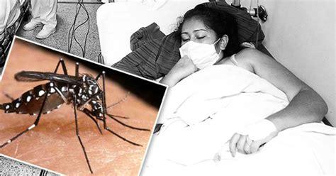 imagenes groseras sobre el chikungunya chikungunya se propaga en latinoam 233 rica