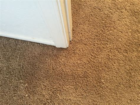 rug repairs east valley carpet repair in chandler az arizona