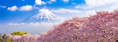 boat tour japan 95 best japan tours holiday packages 2018 2019 compare