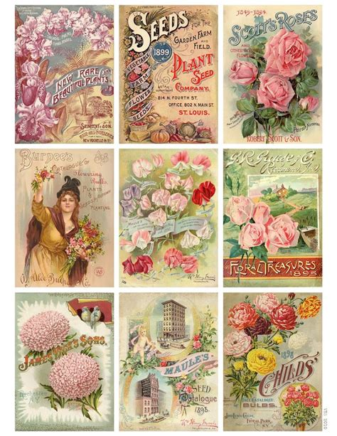 labels flower garden picture flowers free flower images garden jodie lee designs free printable download vintage seed