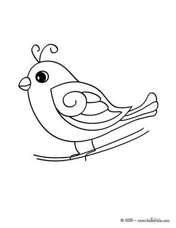 cute bird coloring pages hellokids com