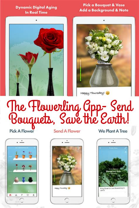 Send Bouquet by Send A Bouquet Or Single With The Flowerling