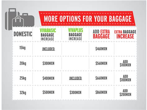 united domestic checked bag baggage allowance domestic south african airways