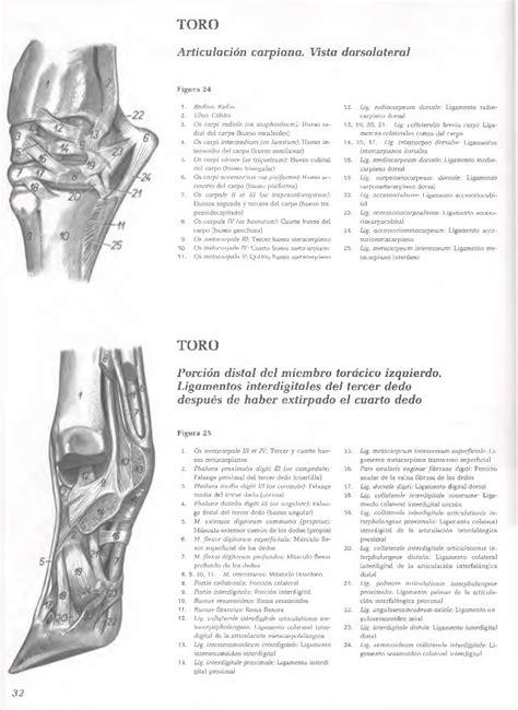 ATLAS POPESKO DESCARGAR PDF