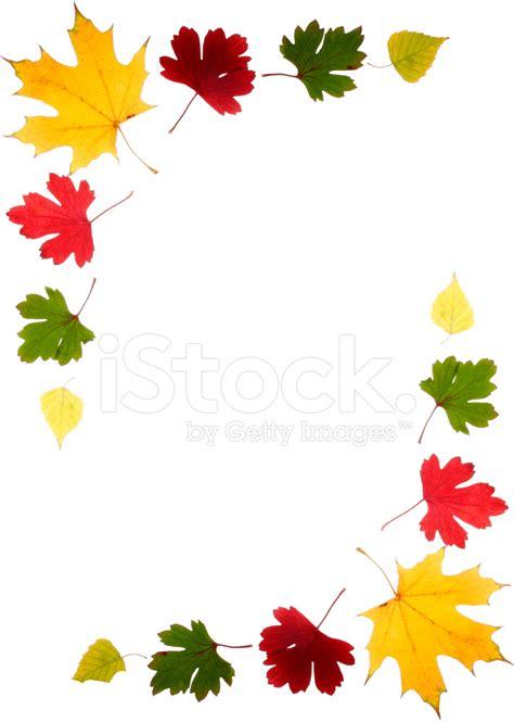 cornici autunno cornice di foglie d autunno fotografie stock freeimages