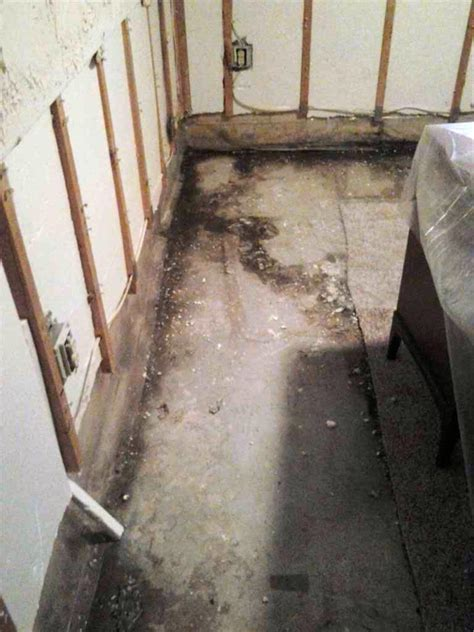 complete basement systems of mn basement waterproofing