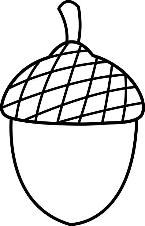 acorn line art free clip art